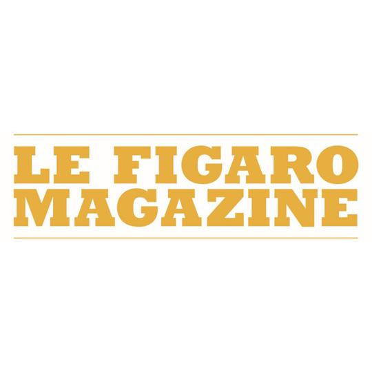 logo-fig-mag