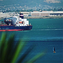 In der Bucht von San Francisco segeln