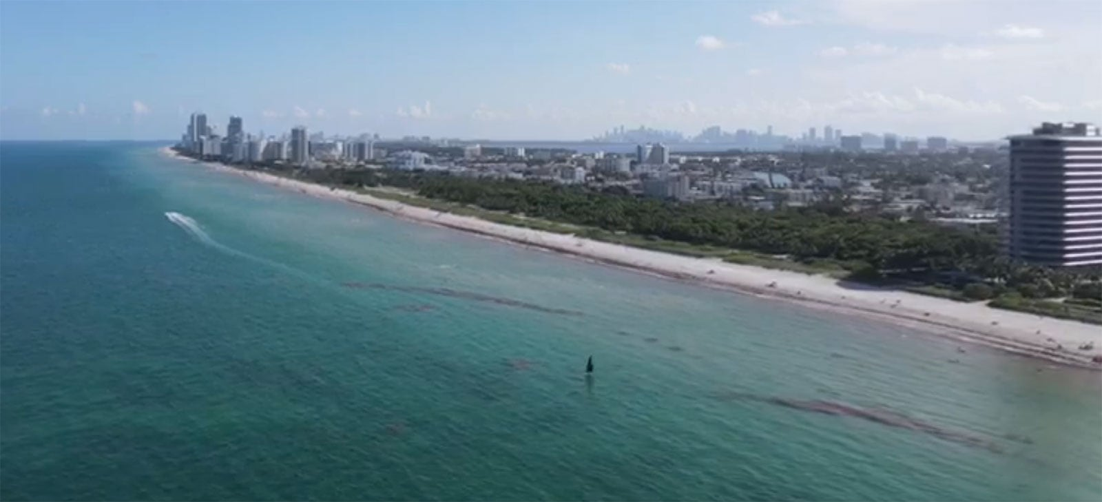 Tiwal Sailing along Miami